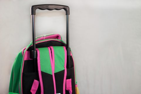 rolling-backpack-handle-1000